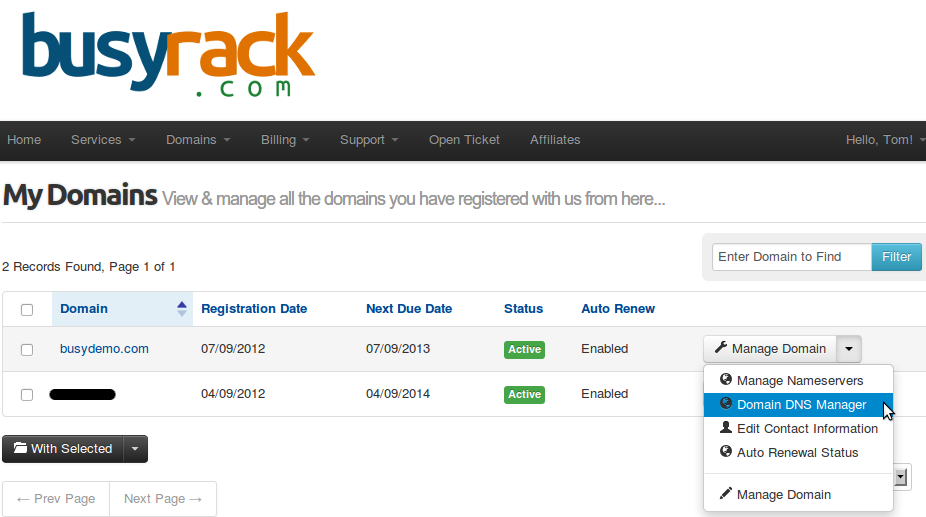 cpanel dns manager for whmcs whmcs addons whmcs modules